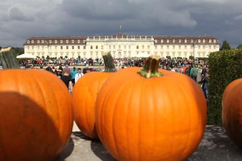 Ludwigsburg Palace Pumpkin Festival!