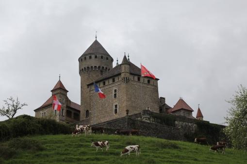 Castle Montrottier