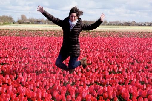 Fields of tulips!